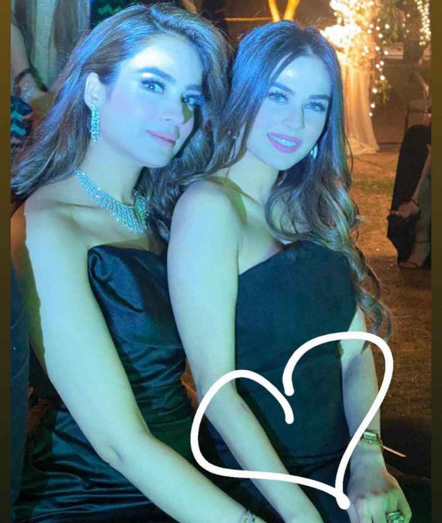 Alyzeh Gabol Second Wedding dinner party (9)