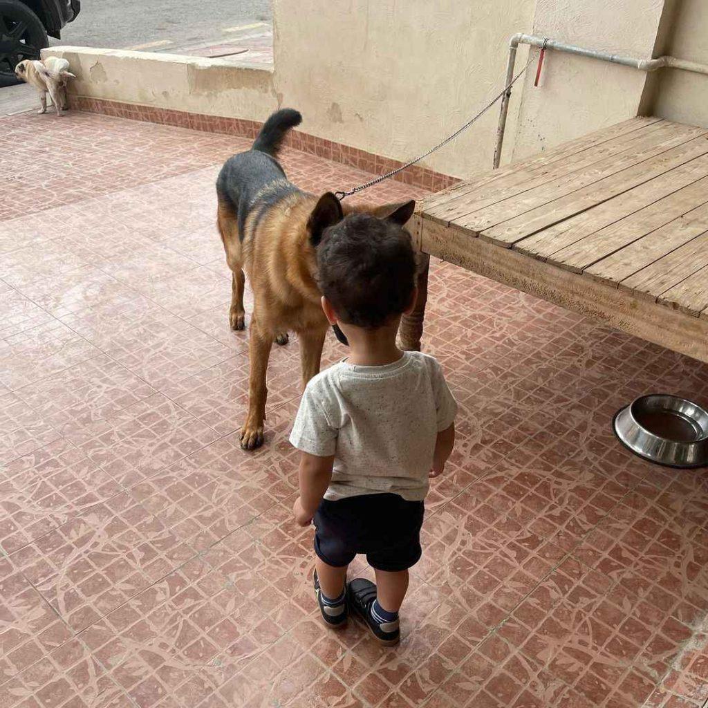 faisal-qureshi-visits-iqra-aziz-house (10)