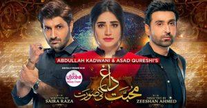 Mohabbat Dagh Ki Soorat Drama Cast – Real Names With Pics